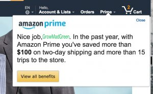 Amazon Prime Message on Savings